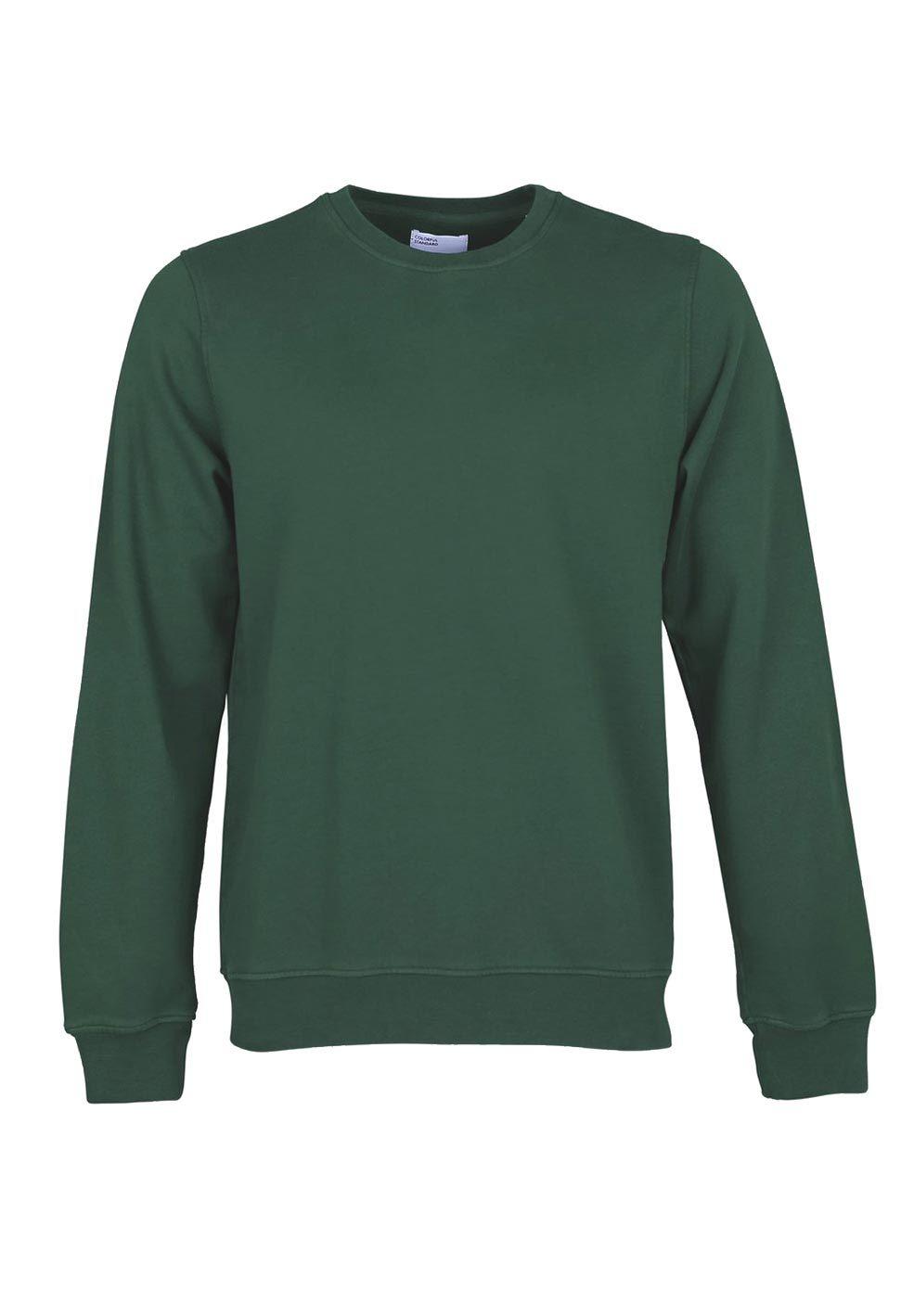 Colorful Standard COLORFUL STANDARD classic organic crew neck sweater emerald green (unisex)